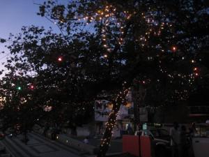 Un arbre décoré sur la place Jérémie  (Port-au-Prince)